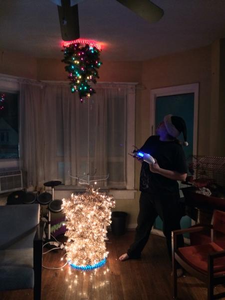 CO-OP Portal Christmas Trees | Kevin James Hunt