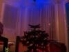 portal-christmas-tree-2012-018