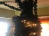 Venom-Tree-004